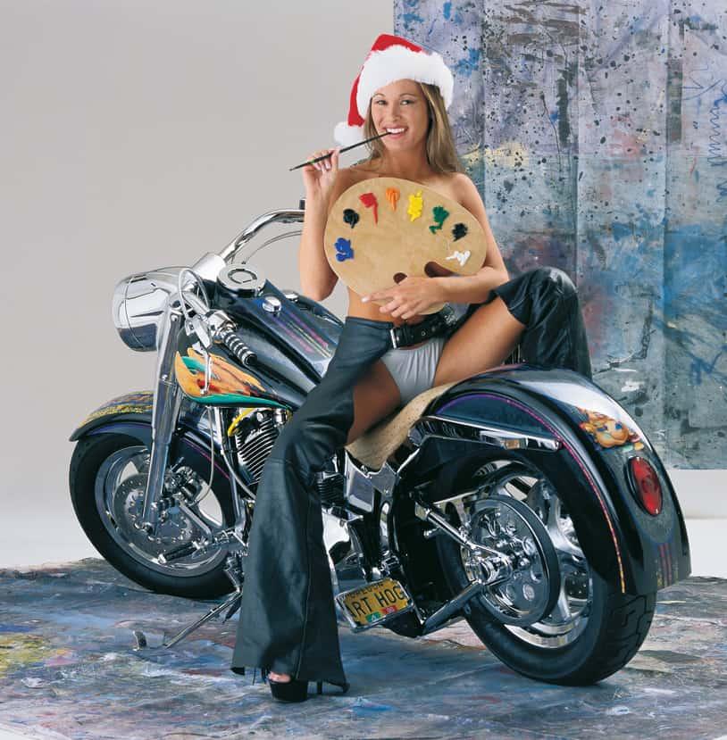 ART HOG custom Harley-Davidson by A.D. Cook