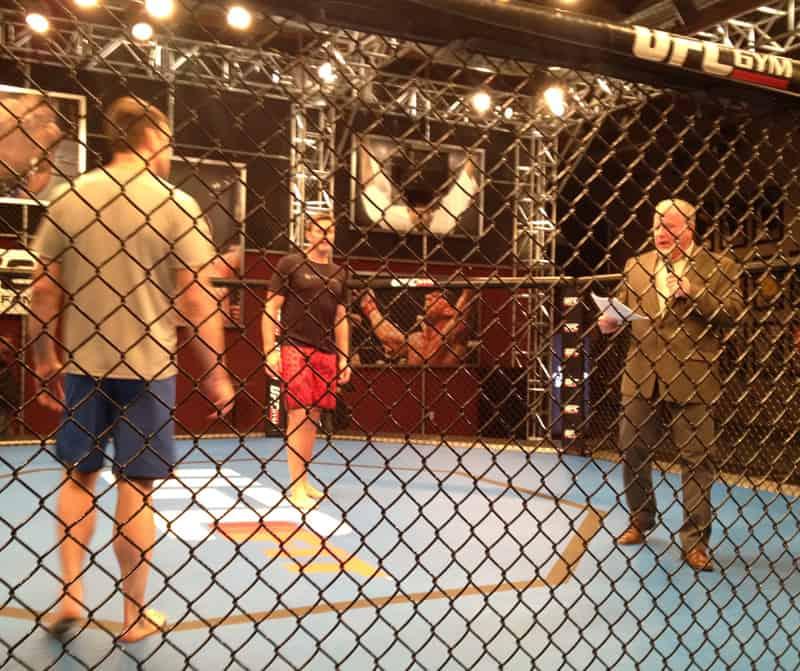 UFC Octagon Bout, Las Vegas, NV