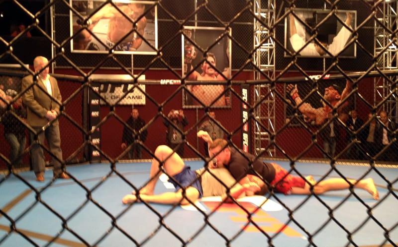 UFC Octagon Demonstration Bout, Las Vegas, NV