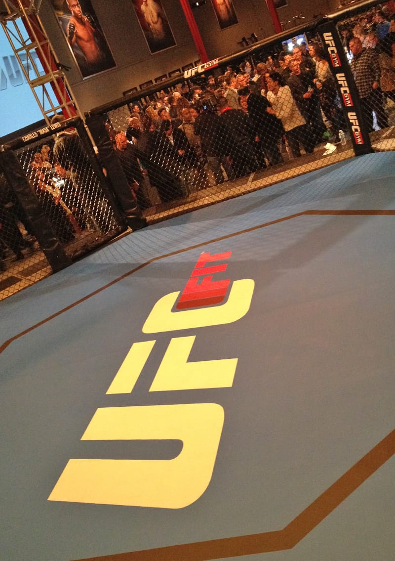 UFC Octagon, Las Vegas, NV