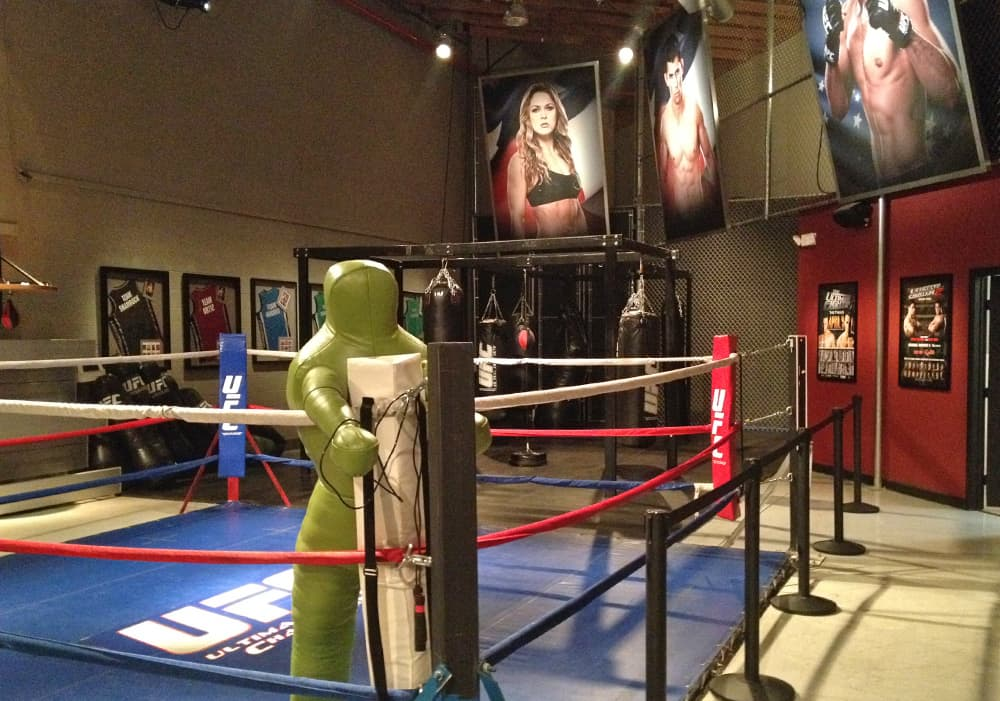 UFC - The Ring, Las Vegas, NV