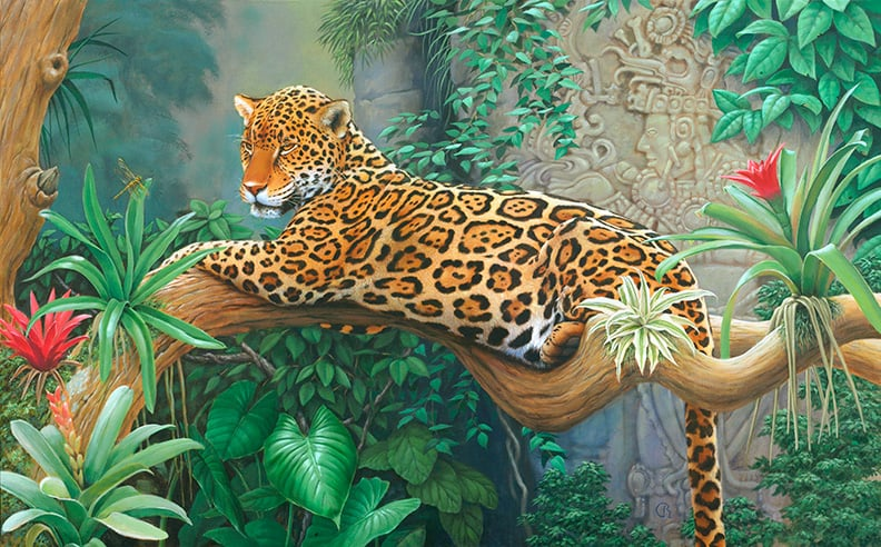 Jaguar painting by Raphael Schnepf