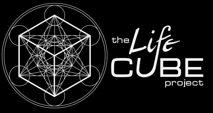 lifecube_splash