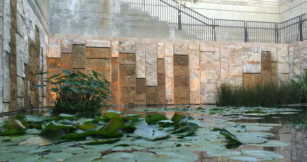 Getty Villa Lilly Pond